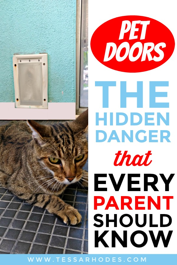 Pet Doors And The Hidden Danger That Every Pa Should Know